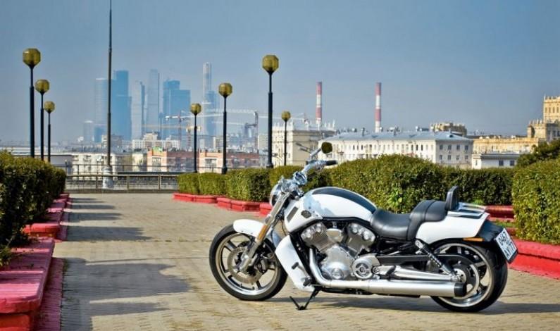 Harley-Davidson V-Rod Muscle: Мужской род
