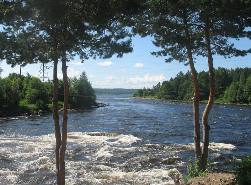 Река где-то между Питером и Республикой Карелией