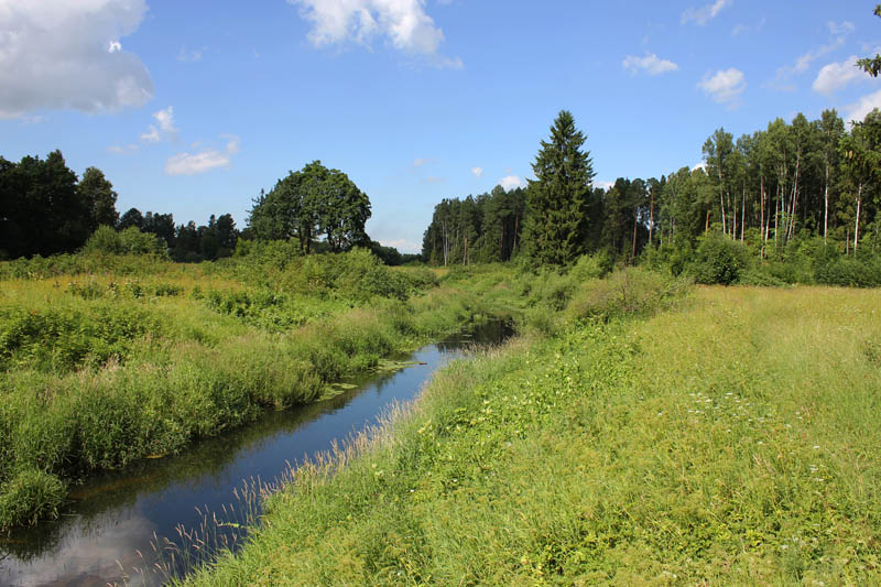 Павловский парк. Можно брести долго вдоль речушки и по петляющим тропам.